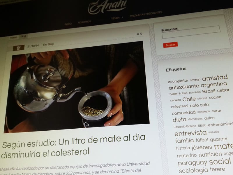 anahi-blog